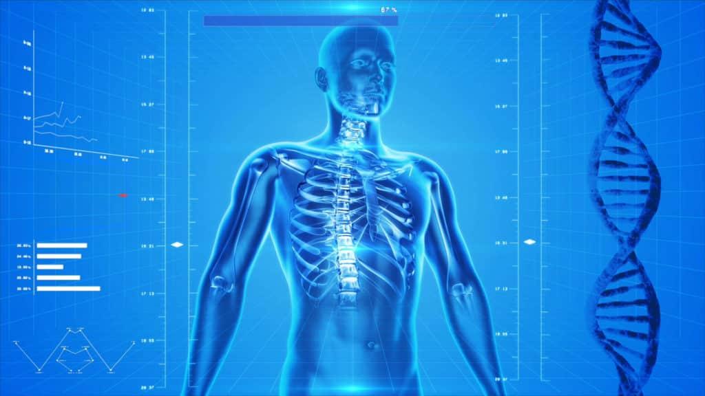 Whole Body Vibration Machine 3D