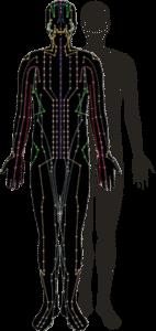 acupuncture spots